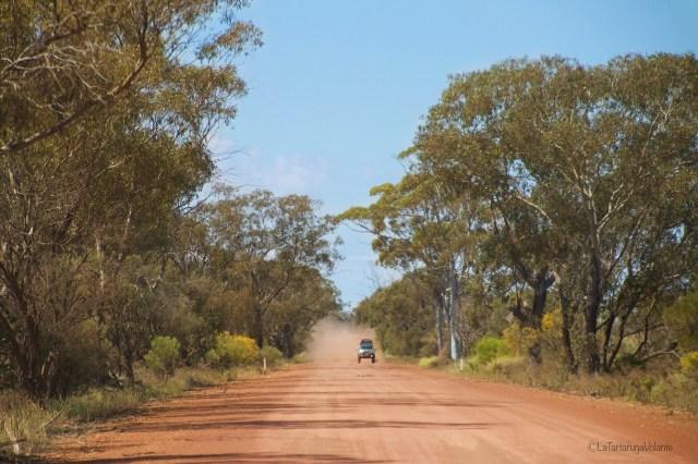 viaggio nell'outback australiano. lungo la strada rossa