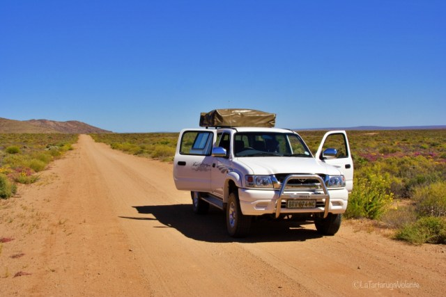 On the road sudafrica