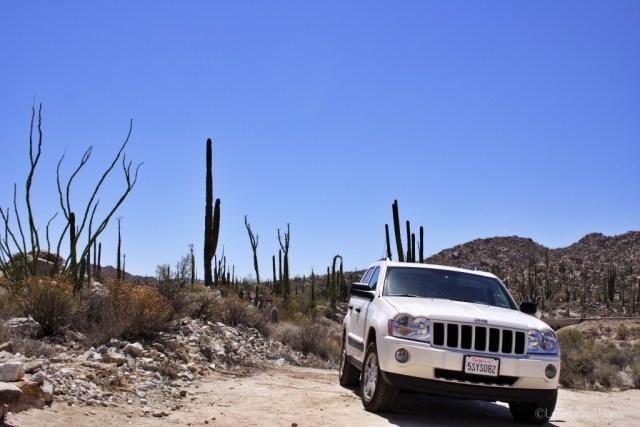 road viaggio on the road, auto in baja california