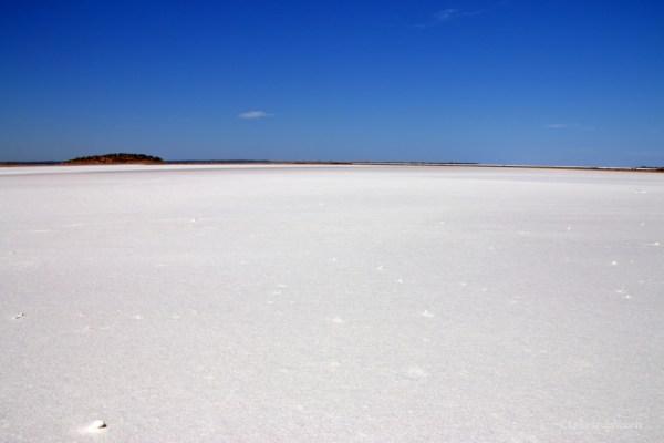 ballard e goldfields region