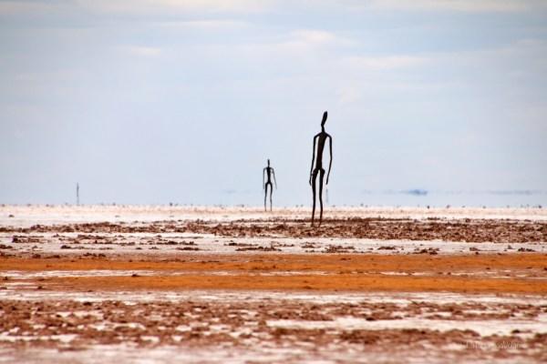 lake ballard, statue ed effetto miraggio