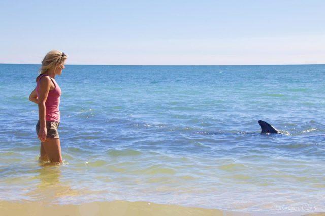 io e il delfino