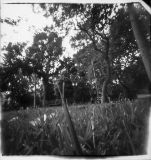12 de novembro | Workshop de Fotografia Pinhole | João Cáceres