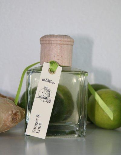invigorating fragrance oil diffuser