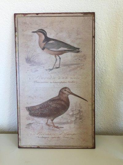 wall art bird motif on metal board