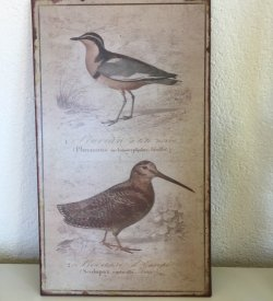 wall art bird motif on metal board