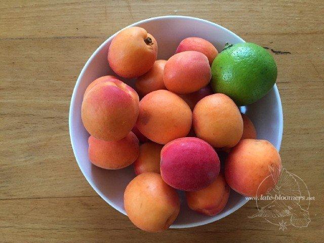 Late Bloomers Aprikosen Relish