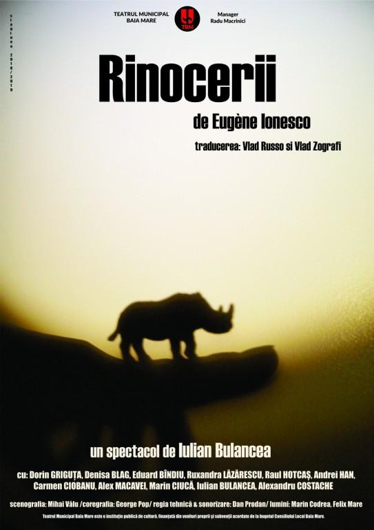 Rinocerii - Teatrul Municipal din Baia Mare poster