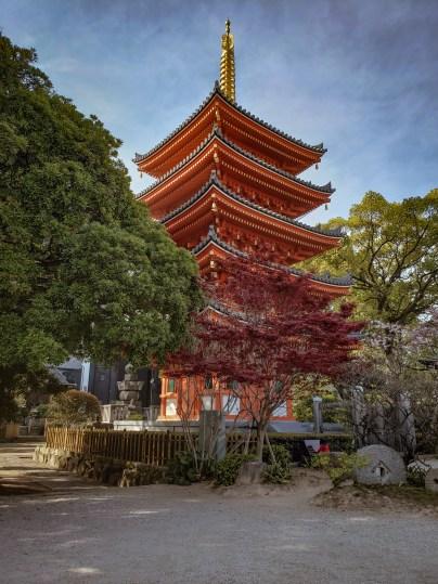 Shrine/ Temples Fukuoka