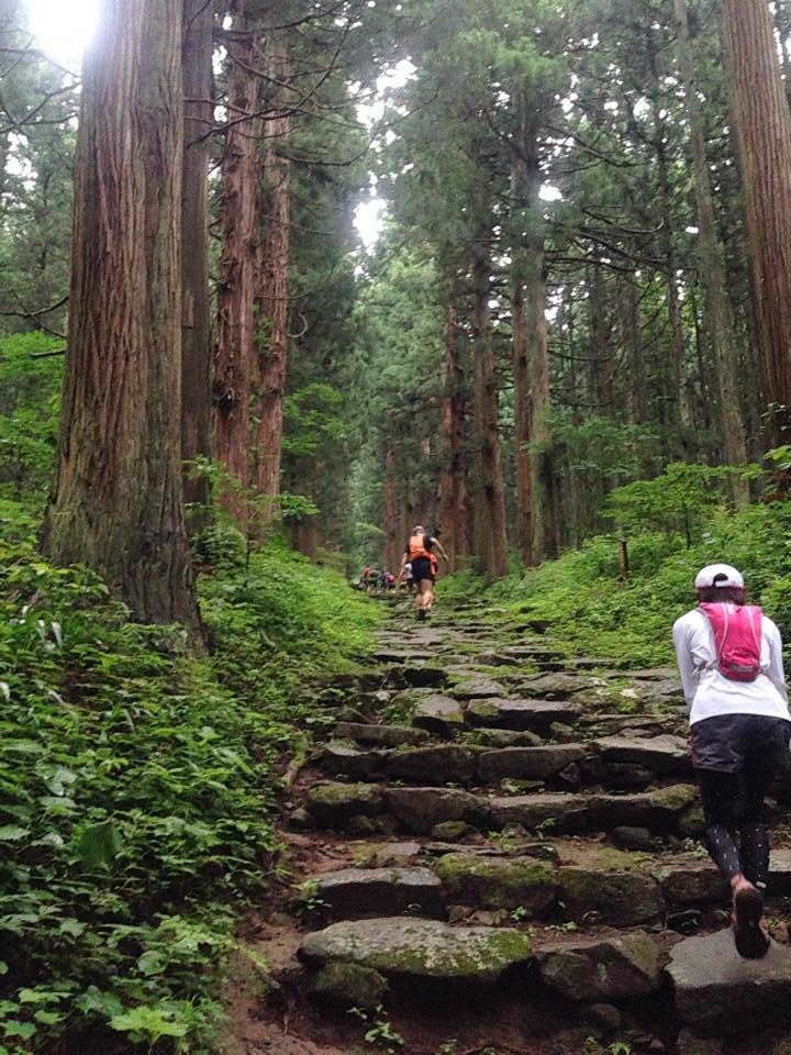 小菅神社までの急登。階段が永遠に続く。先が全く見えない。。 脚が痙攣して大変だったがなんとか登り切る。
