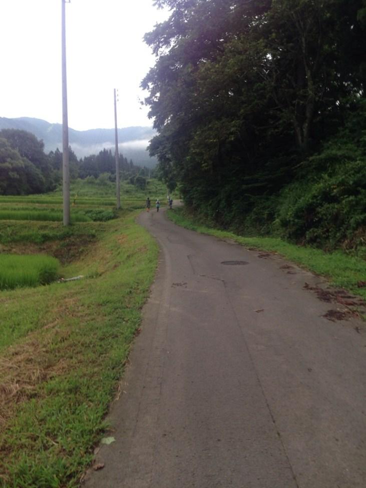 急登から激下りを抜け3rdエイドを抜けるとゴールまで5km近く舗装路をひたすら。(途中トレイルもあります。)
