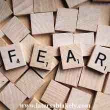 Feel the Fear & Do It Anyways