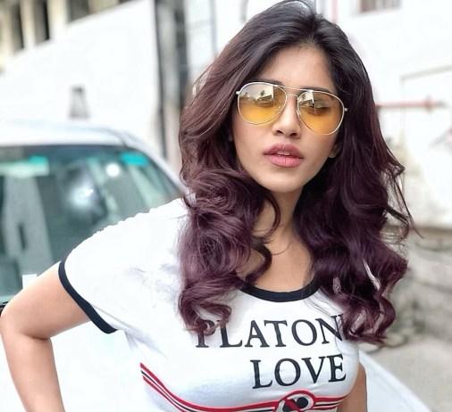 Nabha Natesh Hot Navel Photos