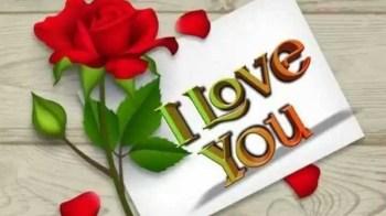 I Love You Status | आई लव यू स्टेटस
