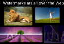 Google researchers have found a vulnerability that can remove watermarks from Stock Photos