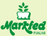 punjab-markfed-previous-year-question-papers