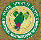 Jharkhand State Horticulture Mission Recruitment