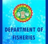 MP Fisheries Recruitment