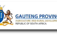 Social Development Learnerships Apply Now