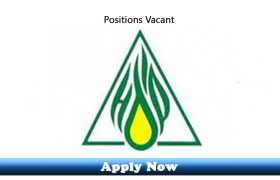 Jobs in HydroCarbon Development Institute of Pakistan Islamabad 2020