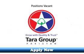 Jobs in Tara Group Lahore 2020
