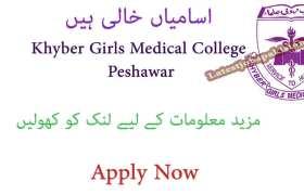 Jobs in Khyber Girls Medical College Hayatabad Peshawar 2020