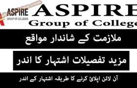 Jobs in Aspire Group of Colleges Dhamyal Campus 2020