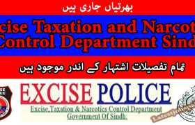 Jobs in Jobs in Excise Taxation and Narcotics Control Department Sindh