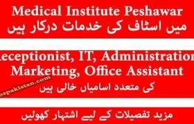 Management Staff Jobs at Medical Institute Peshawar 2020