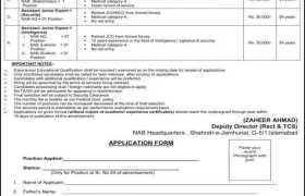 National Accountability Bureau Jobs 2020