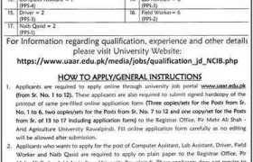 Pir Mehr Ali Shah Arid Agriculture University Rawalpindi Jobs 2020