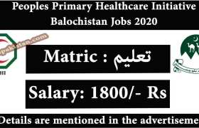 Jobs in Peoples Primary Healthcare Initiative Balochistan 2020