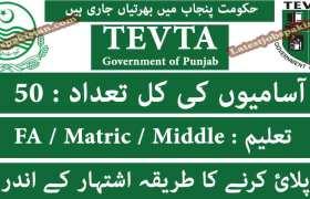 Jobs in Government of Punjab TEVTA 2020