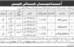 Federal Government Organization Jobs 2020