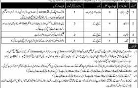 170 PSPASC Peshawar City Jobs 2020