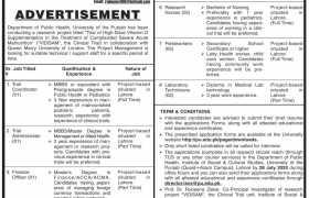 Institute of Social & Cultural Studies University of the Punjab Jobs 2020