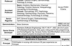 Aziz Fatimah Medical & Dental College (AFM&DC) Faisalabad Jobs 2020
