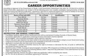 Office of the Chairman District Council Dadu Jobs 2020