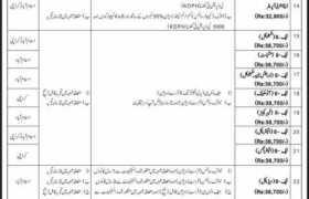 Progressive Public Sector Organization Islamabad and Karachi Jobs 2020