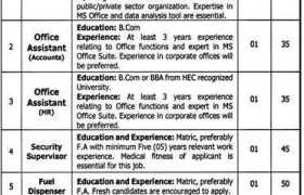 Government Organization Faisalabad Jobs 2020