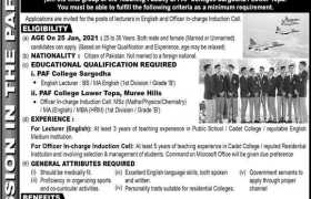 PAF Colleges Sargodha & Lower Topa Jobs 2020