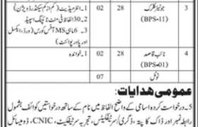 Revenue Universities & Board Department Sindh Jobs 2020