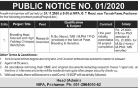 NIFA Peshawar Walk-in-Interview 2020