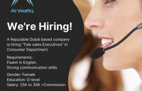 Al Wafiq CallCenter Jobs 2021