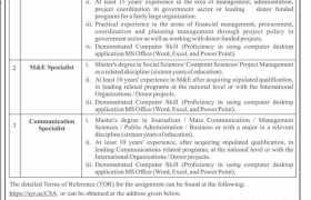 Jobs in Finance Department Kpk 2021