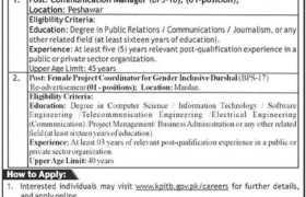 KPITB Digital Jobs in Khyber Pakhtunkhwa 2021