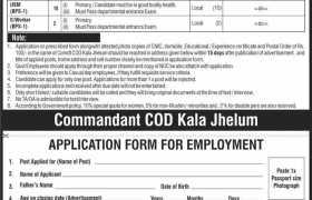 Central Ordnance Depot Kala Jehlum Jobs 2021