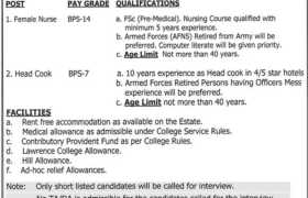 Lawrence College Murree Jobs 2021