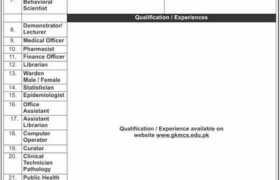 Jobs in Bacha Khan Medical Complex Swabi 2021