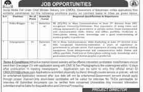 Social Media Cell Balochistan Jobs 2021